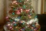 Fangirl Christmas 2010