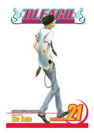 bleach-volume-21.jpg